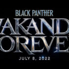 Official Title and Release Date for Black Panther 2 Revealed